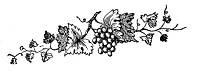 Frantic Stamper Cling-Mounted Rubber Stamp - Grape Border #1
