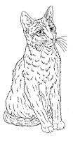 Frantic Stamper Cling-Mounted Rubber Stamp - Lg Sitting Kitty