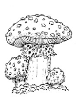 Frantic Stamper Cling-Mounted Rubber Stamp - Med ToadStool