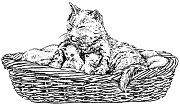 Frantic Stamper Cling-Mounted Rubber Stamp - Cat w/ Kittens