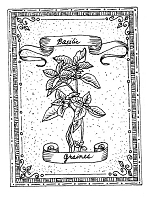 Frantic Stamper Cling-Mounted Rubber Stamp - Basil Seeds