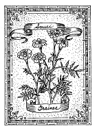 Frantic Stamper Cling-Mounted Rubber Stamp - Marigold Seeds