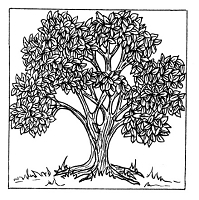 Frantic Stamper Cling-Mounted Rubber Stamp - Lg Summer Tree