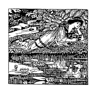 Frantic Stamper Cling-Mounted Rubber Stamp - Pond Lady