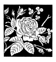 Frantic Stamper Cling-Mounted Rubber Stamp - Rose Block
