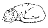 Frantic Stamper Cling-Mounted Rubber Stamp - Sleeping Cat