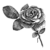 Frantic Stamper Cling-Mounted Rubber Stamp - Large Rose
