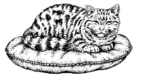 Frantic Stamper Cling-Mounted Rubber Stamp - Lg Tabby on Pillow
