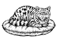 Frantic Stamper Cling-Mounted Rubber Stamp - Sm Tabby on Pillow