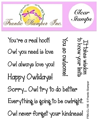 Frantic Stamper Clear Stamp Set - Owl Sentiments