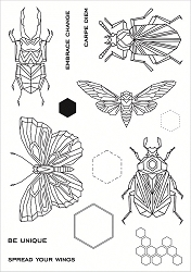 Funky Fossil - A5 Clear Stamp - Geo Bugs