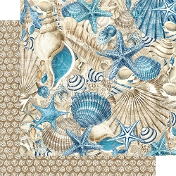 Graphic 45 - Ocean Blue Collection - Belize 12