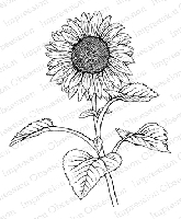 Impression Obsession - Cling Mounted Rubber Stamp - By Tara Caldwell - Sunflower in Bloom