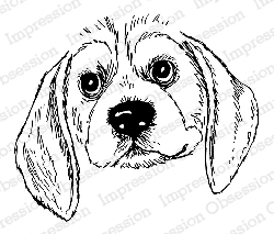 Impression Obsession - Cling Mounted Rubber Stamp - By Gail Green - Beagle