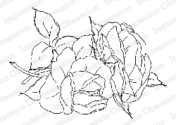 Impression Obsession - Cling Mounted Rubber Stamp - By Alesa Baker - Sweet Heart Rose