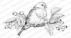 Impression Obsession - Cling Mounted Rubber Stamp - By Tara Caldwell - Sweet Baby Bird
