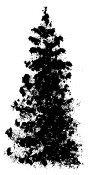 Impression Obsession - Cling Stamp - Brush Tree 2