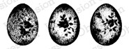 Impression Obsession - Cling Mounted Rubber Stamp - By Alesa Baker - Rose Egg Trio