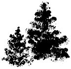 Impression Obsession - Cling Stamp - Brush Tree 3