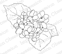 Impression Obsession - Cling Mounted Rubber Stamp - By Alesa Baker - Hydrangea Plant Small