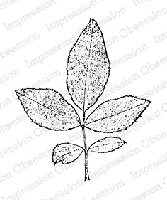 Impression Obsession - Cling Mounted Rubber Stamp - By Tara Caldwell - Rose Leaf