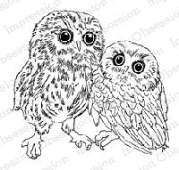 Impression Obsession - Cling Mounted Rubber Stamp - By Gail Green - Two Owls