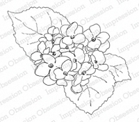 Impression Obsession - Cling Mounted Rubber Stamp - by Alesa Baker - Hydrangea Plant Large