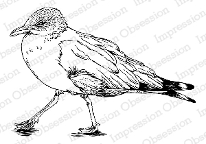 Impression Obsession - Cling Mounted Rubber Stamp - By Tara Caldwell - Small Seagull
