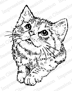 Impression Obsession - Cling Mounted Rubber Stamp - By Gail Green - Curious Kitty