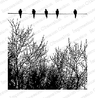 Impression Obsession - Cling Mounted Rubber Stamp - By Tara Caldwell - Birds on a Wire