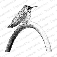 Impression Obsession - Cling Mounted Rubber Stamp - By Tara Caldwell - Perched Hummingbird