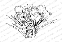 Impression Obsession - Cling Mounted Rubber Stamp - By Tara Caldwell - Spring Crocus