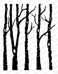 Impression Obsession - Cling Mounted Rubber Stamp - By Alesa Baker - Birch Forest Solid