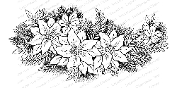 Impression Obsession - Cling Mounted Rubber Stamp By Tara Caldwell - Poinsettia Swag