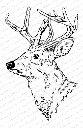 Impression Obsession - Cling Mounted Rubber Stamp By Gail Green - Stag Head