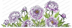 Impression Obsession - Peonies Slimline Cling Mounted Rubber Stamp
