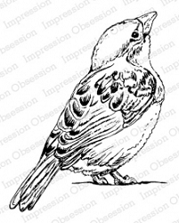 Impression Obsession - Cling Mounted Rubber Stamp By Tara Caldwell - Gazing Bird
