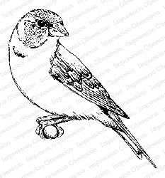Impression Obsession - Cling Mounted Rubber Stamp By Tara Caldwell - Perched Finch