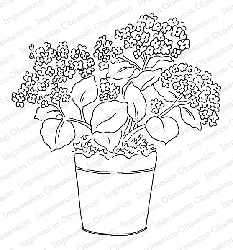 Impression Obsession - Cling Mounted Rubber Stamp By Alesa Baker - Potted Hydrangea