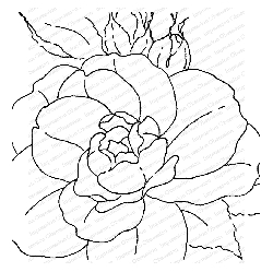 Impression Obsession - Cover A Card Tea Rose Cling Mounted Rubber Stamp