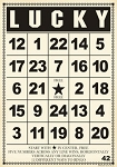 Jenni Bowlin Bingo Card Packs - Large Lucky