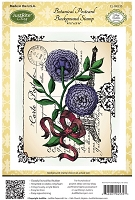 Just Rite - Cling Stamp Set - by Amy Teddler Designs - Botanical Postcard Background Stamp