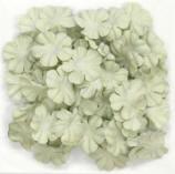 Kaiser Small Flat Paper Flowers Mint