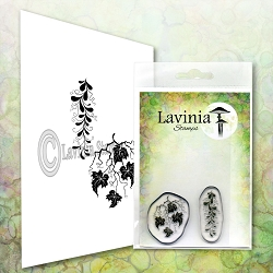 Lavinia Stamps - Clear Stamp - Twisted Vine Set