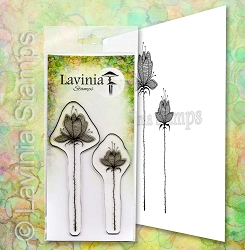 Lavinia Stamps - Clear Stamp - Lilium Set