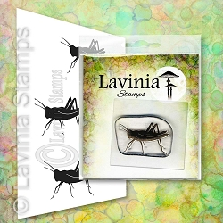 Lavinia Stamps - Clear Stamp - Jiminy
