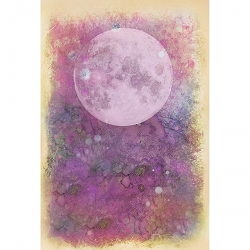 Lavinia Stamps - SceneScapes Prints - Summer Night