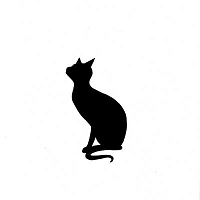 Lavinia Stamps - Clear Stamp - Witches Cat
