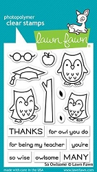 Lawn Fawn - Clear Stamps - So Owlsome
