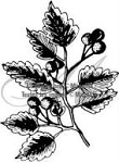 Magenta-Cling Stamp-Berry Branch
